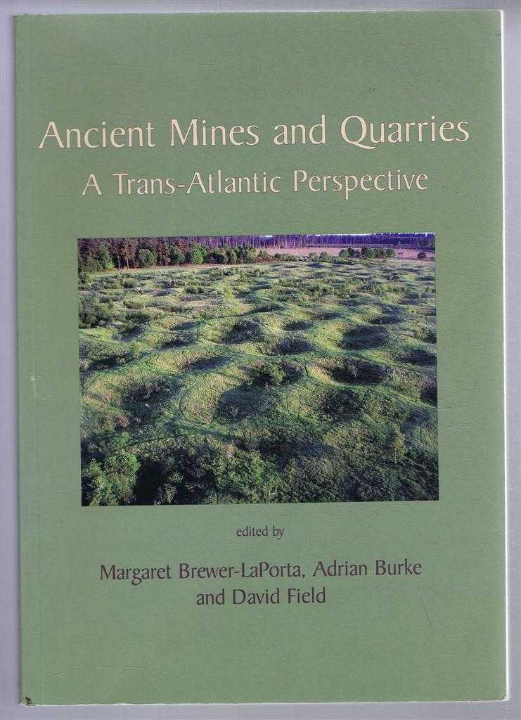 Image for Ancient Mines and Quarries, a Trans-Atlantic Perspective