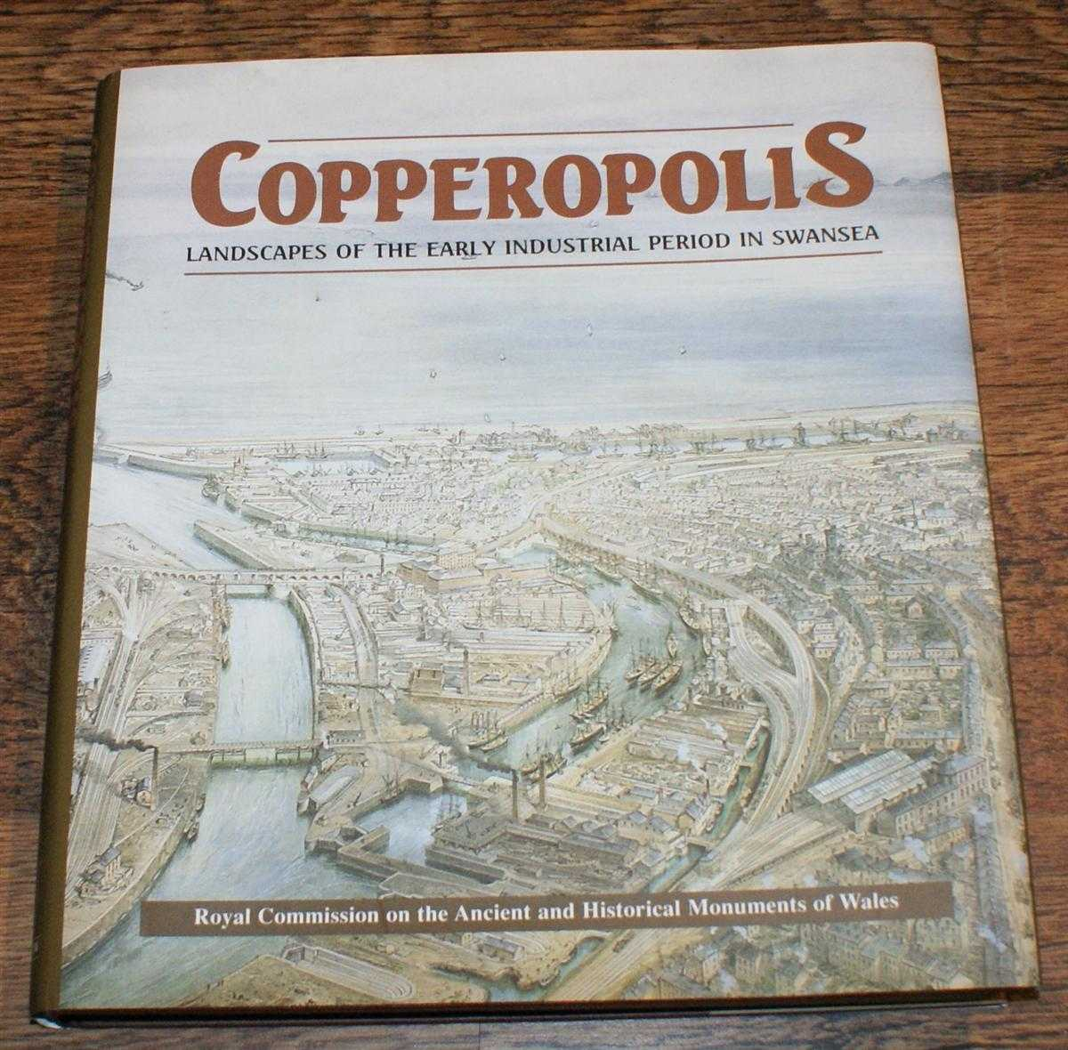 Copperopolis - Landscapes of the Early Industrial Period in Swansea, Stephen Hughes