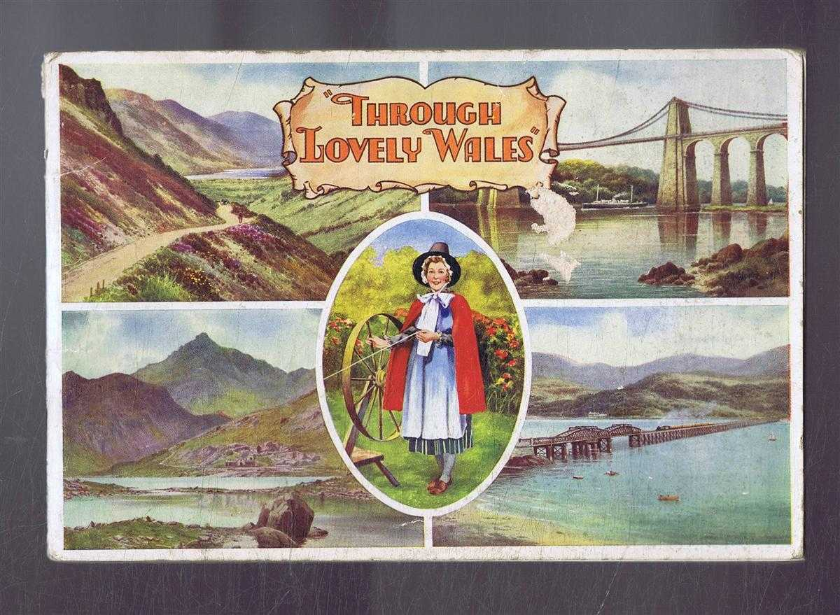 Image for Through Lovely Wales, Picturesque Beauties of this Lovely Land