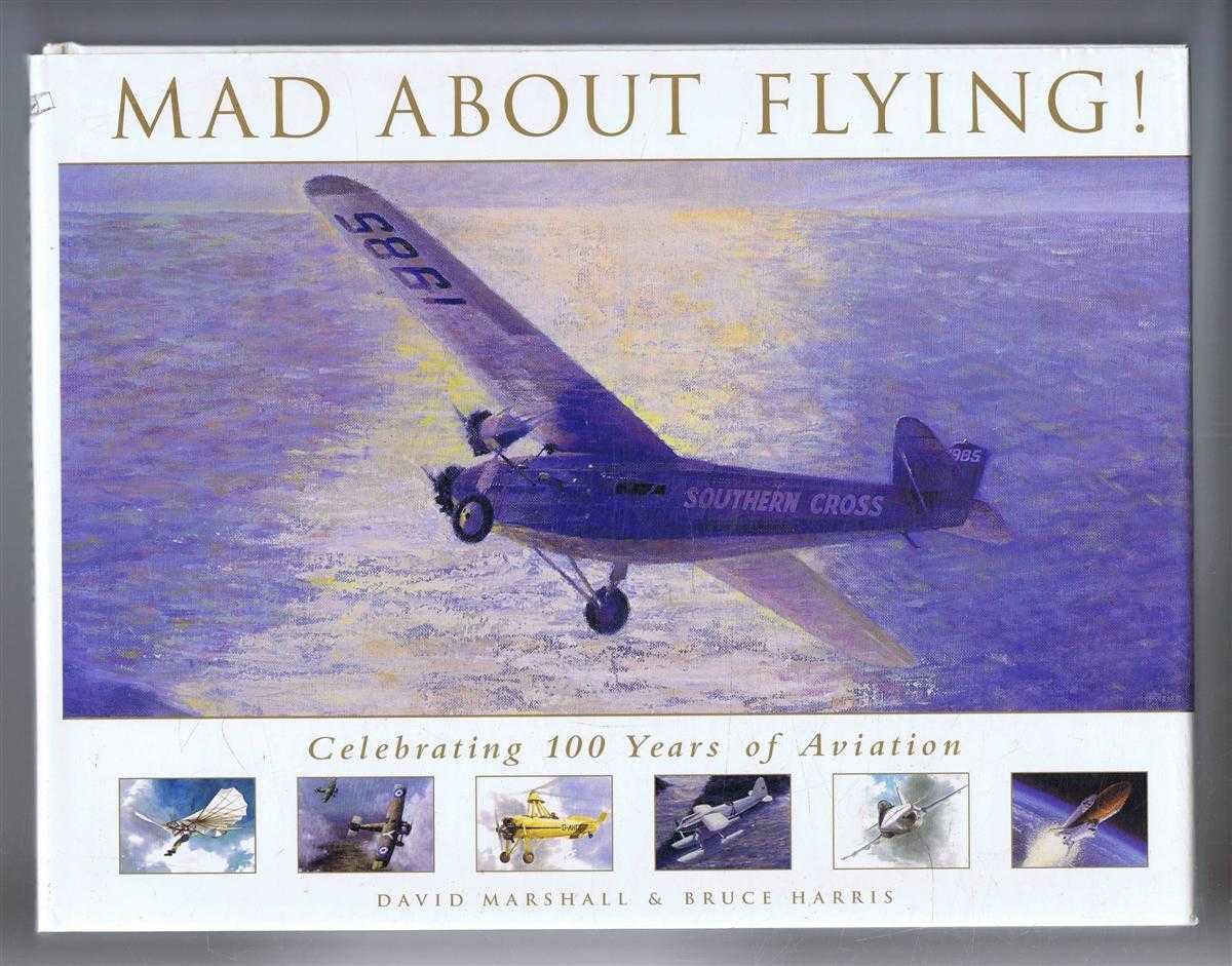 Image for Mad About Flying! Celebrating 100 Years of Aviation