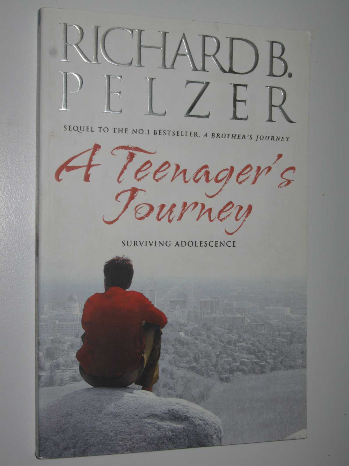 Image for A Teenager's Journey: Surviving Adolescence