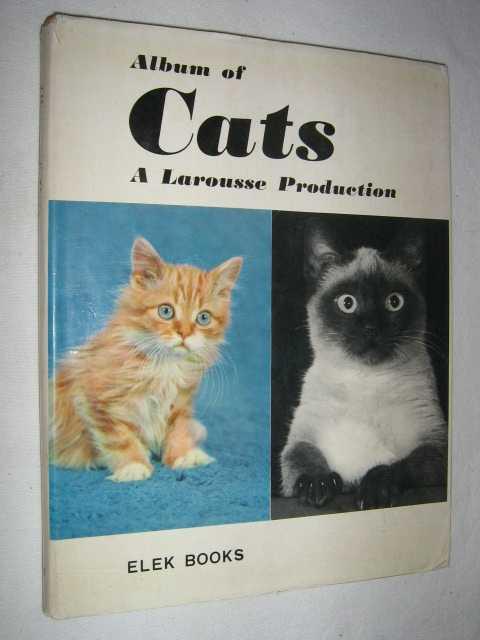 Album of Cats, Adam, Marcelle & Reade, Wynwood