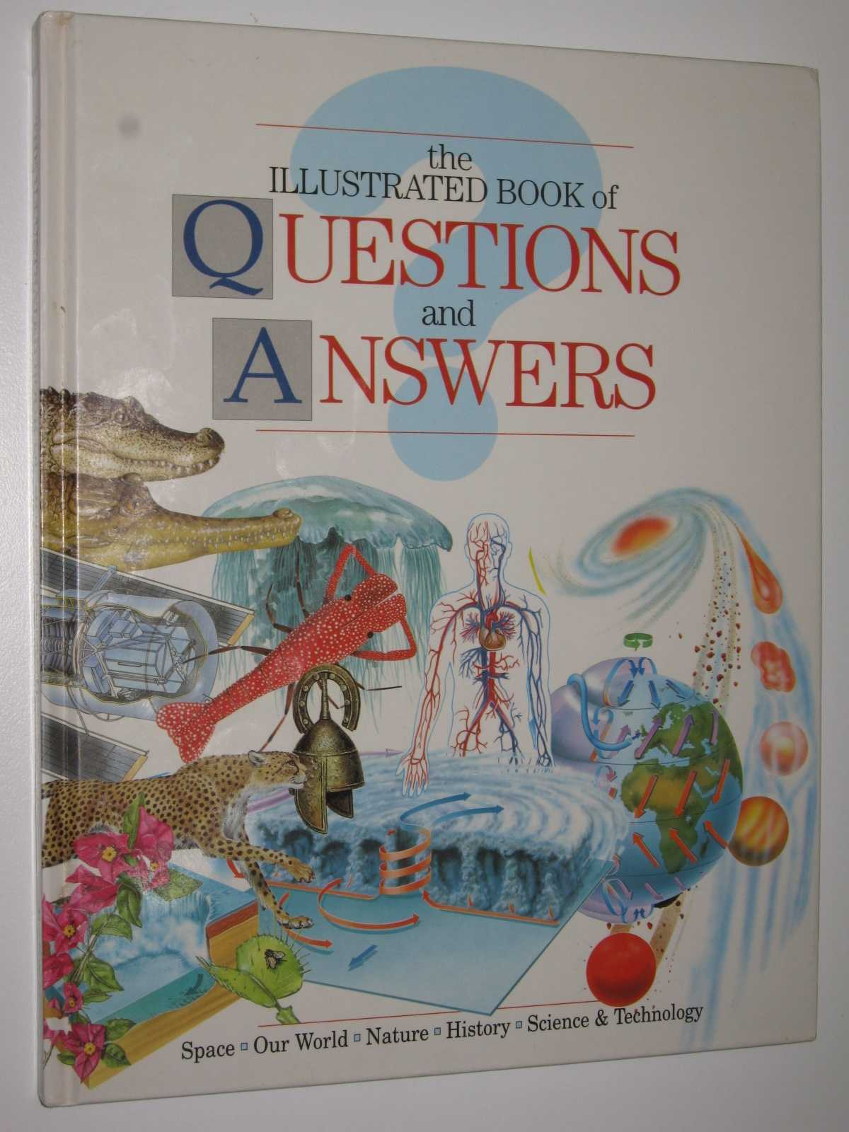 The Illustrated Book of Questions and Answers, Langley, Andrew