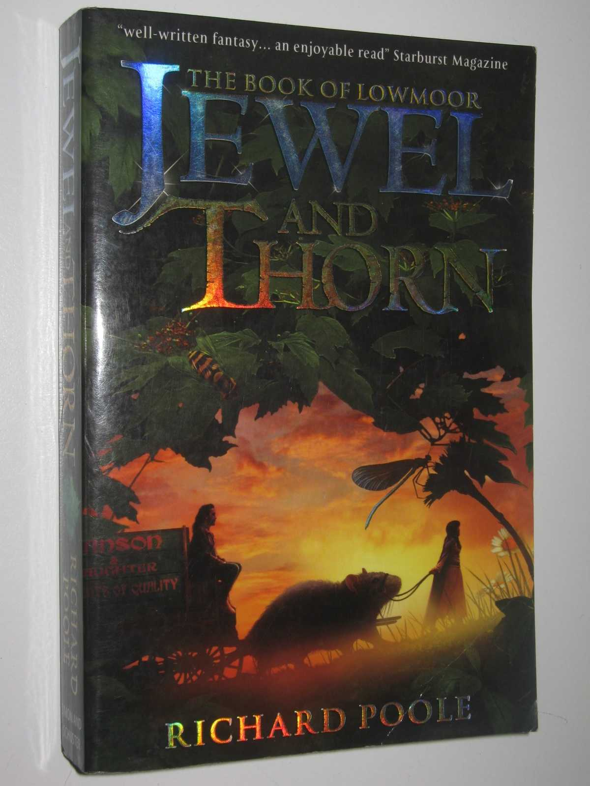 Jewel and Thorn - The Book of Lowmoor, Poole, Richard