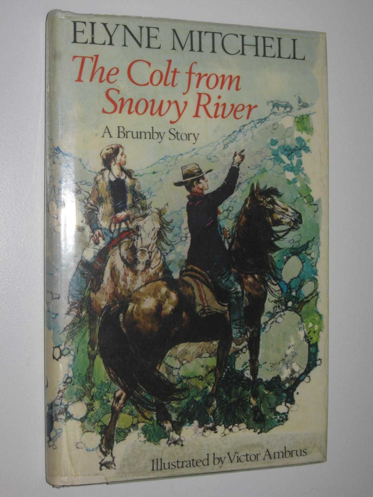 Image for The Colt From Snowy River : A Brumby Story