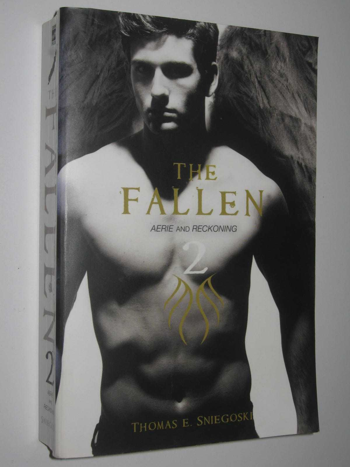 Image for Aerie + Reckoning - The Fallen Series #2