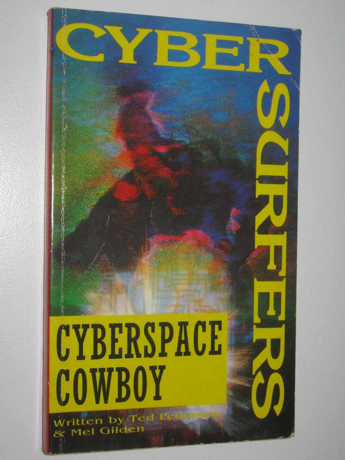 Image for Cyberspace Cowboy - Cybersurfers Series #2