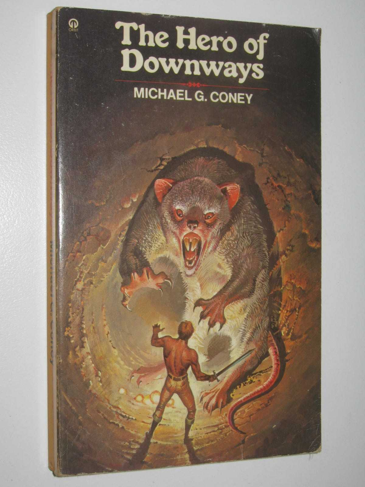 Image for The Hero of Downways