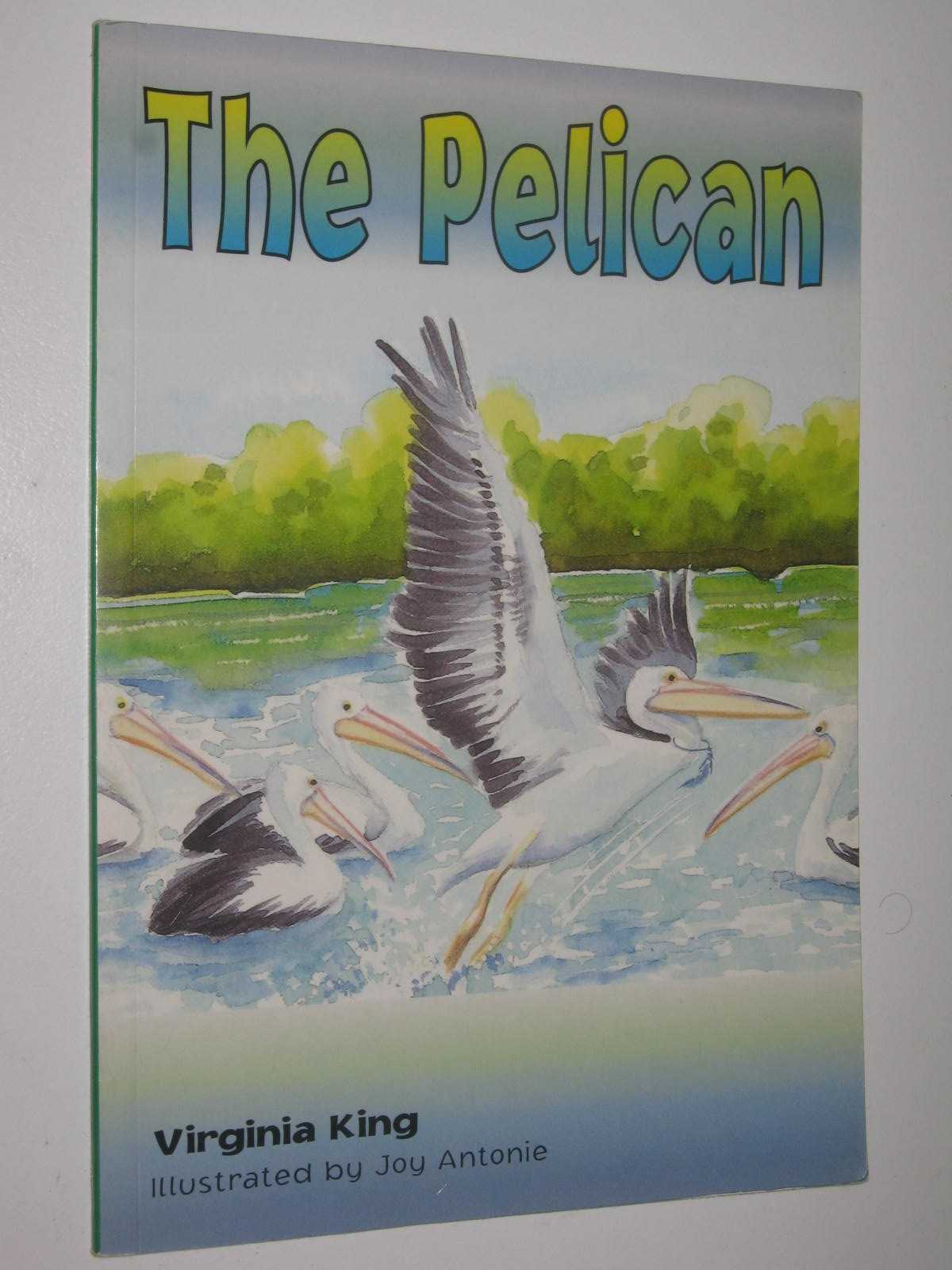 Image for The Pelican - Momentum Series #6.3