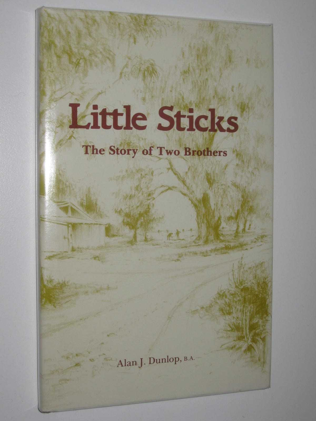 Image for Little Sticks : The Story of Two Brothers