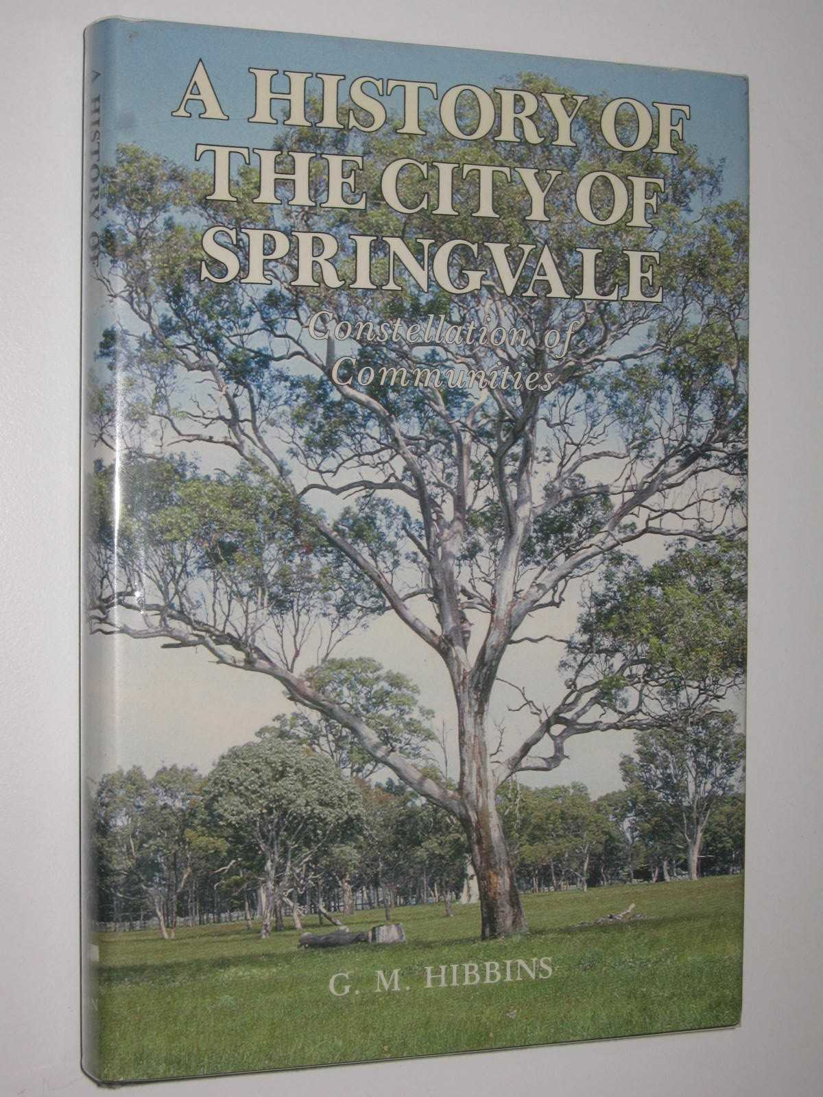 Image for A History of the City of Springvale : Constellation of Communities
