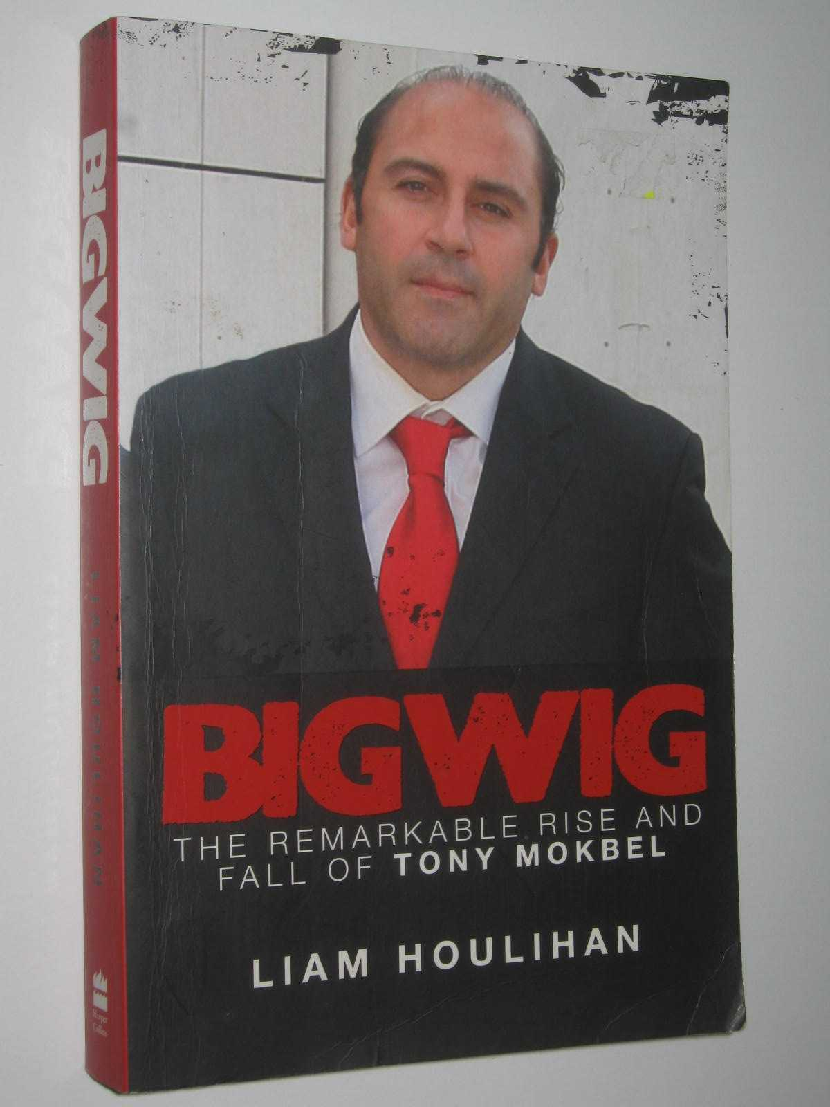 Image for Bigwig : The remarkable rise and fall of Tony Mokbel