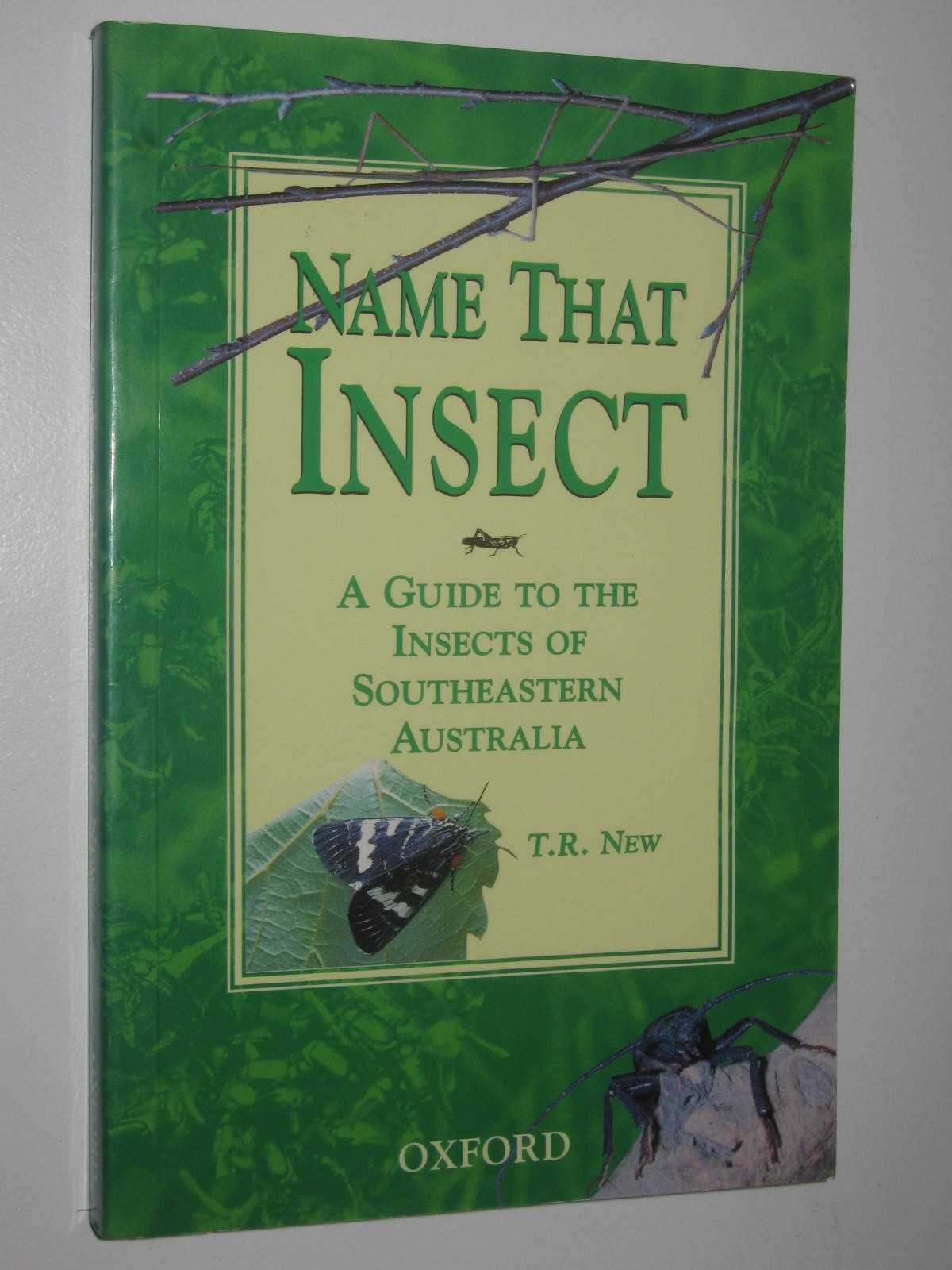 Image for Name That Insect : A Guide to the Insects of Southeastern Australia
