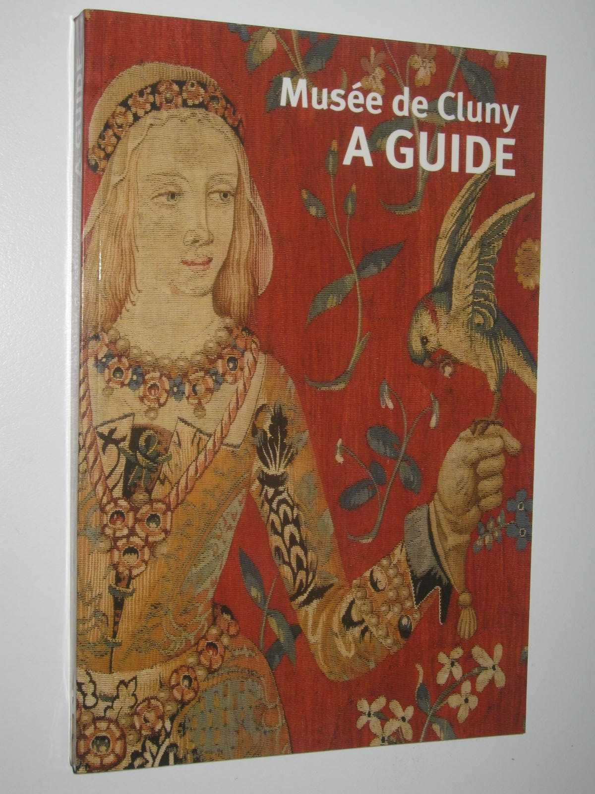 Image for GUIDE MUSEE DE CLUNY (ANGLAIS): MUSEE DE CLUNY-MUSEE NATIONAL DU MOYEN AGE