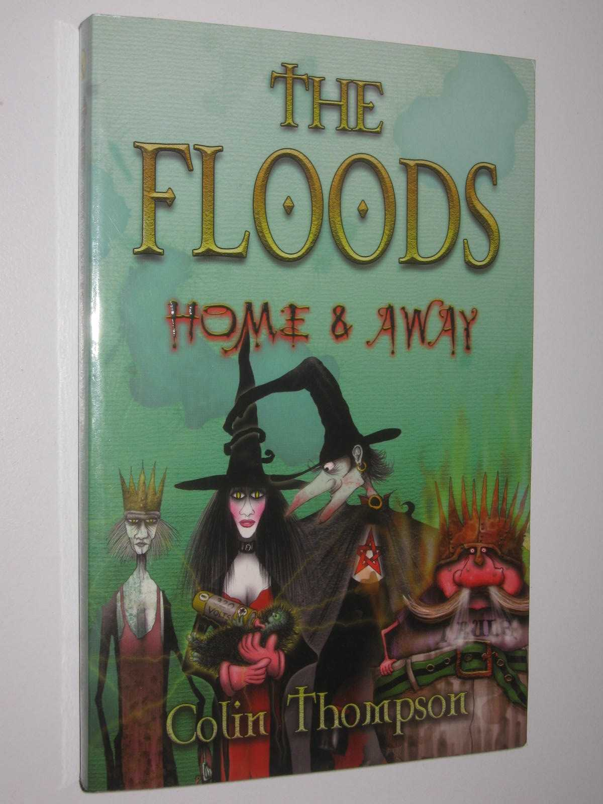 Image for Home and Away - The Floods Series #3