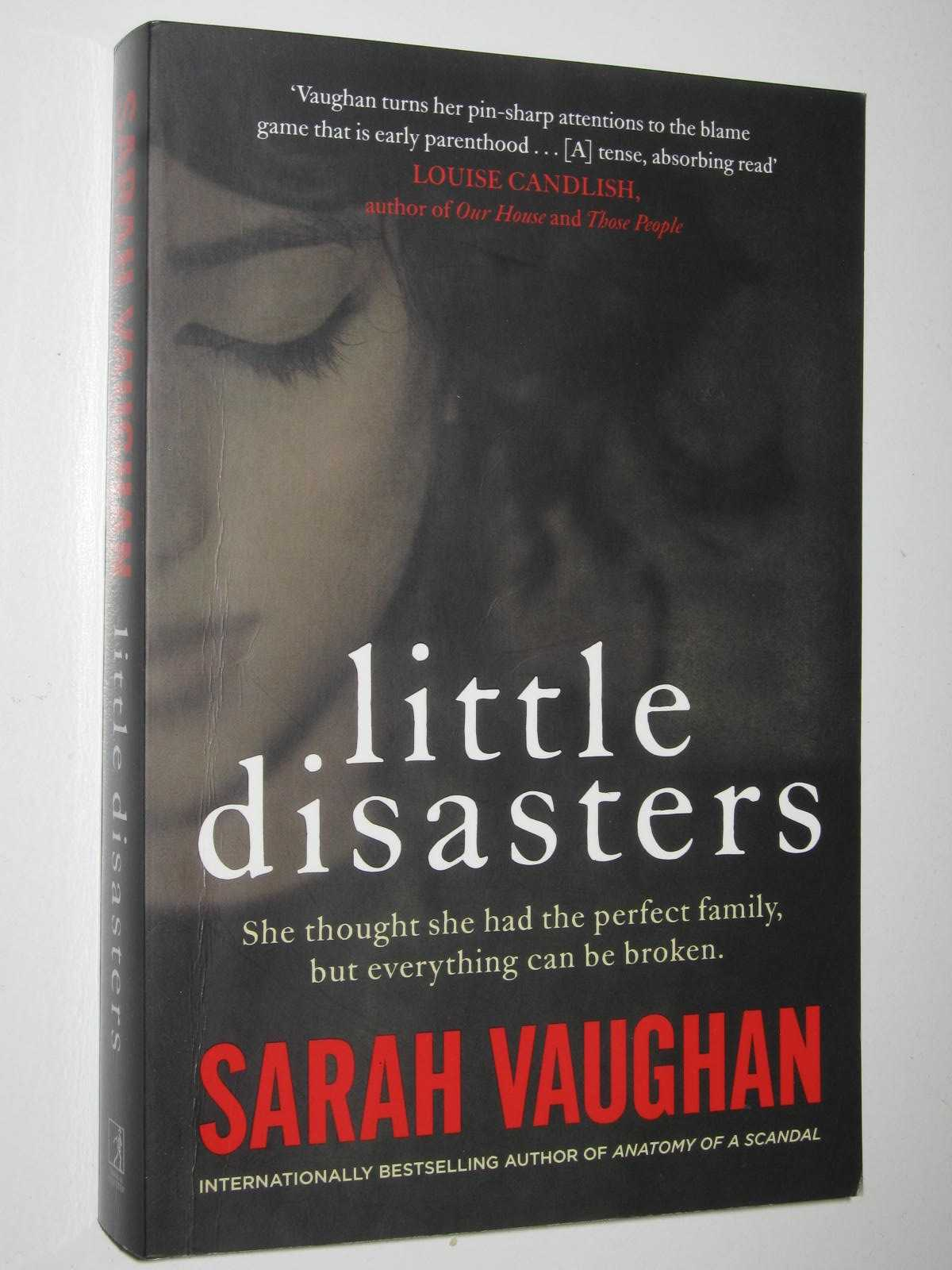 Image for Little Disasters