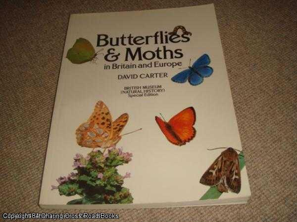 DAVID CARTER - Butterflies and Moths in Britain and Europe