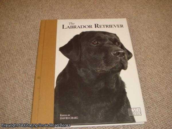 DAVID CRAIG - Labrador Retriever - Best of Breed