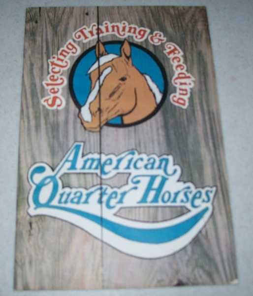 Selecting, Training and Feeding American Quarter Horses, N/A