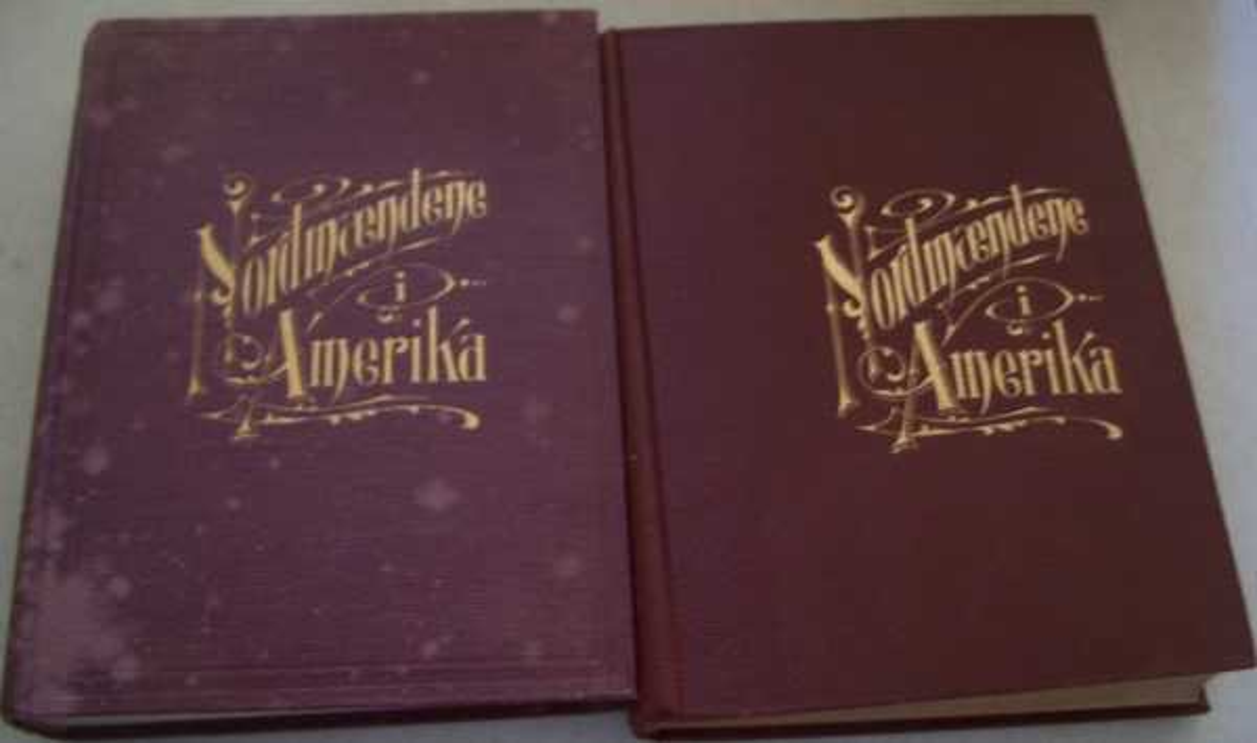 Nordmaendene I Amerika Deres Histoire og Rekord in Two Volumes, Ulvestad, Martin
