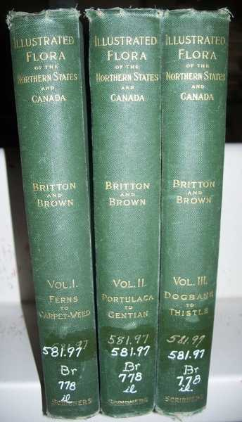 An Illustrated Flora of the Northern United States, Canada and the British Possessions in Three Volumes: Volume I-Ferns to Carpet-Weed; Volume II-Portulaca to Gentian; Volume III-Dogbane to Thistle, Britton, Nathaniel Lord and Brown, Hon. Addison