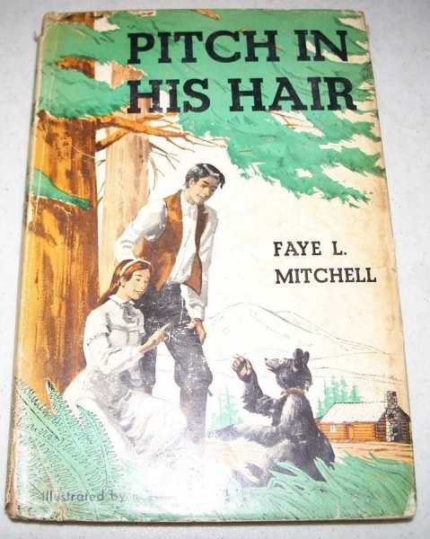 Pitch in His Hair, Mitchell, Faye L.