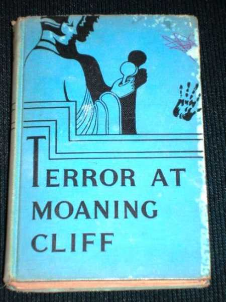 Terror at Moaning Cliff (Melody Lane Mystery Stories), Garis, Lillian