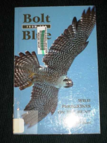 Bolt From the Blue: Wild Peregrines on the Hunt, Dekker, Dick