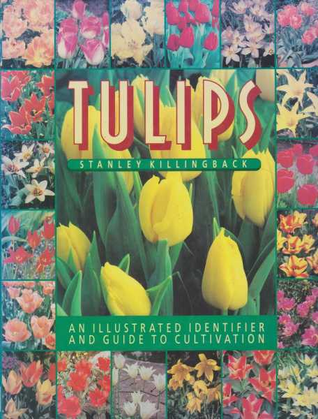 Tulips - an Illustrated Identifier and Guide to Cultivation, Stanley Killingack