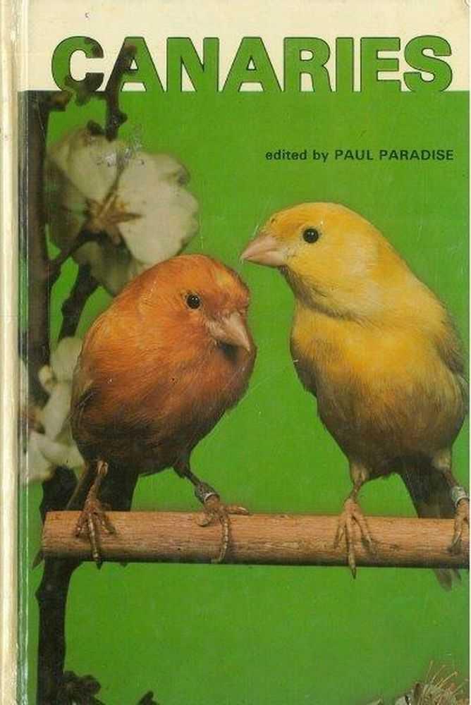 Canaries, Paul Paradise
