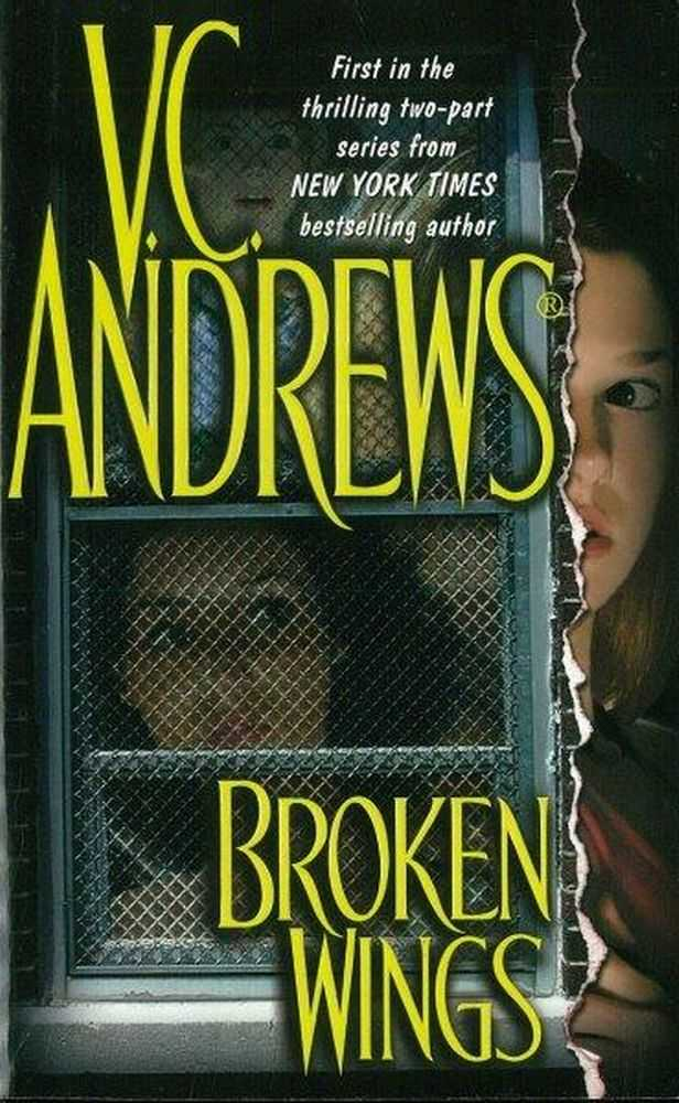 Broken Wings, V. C. Andrews