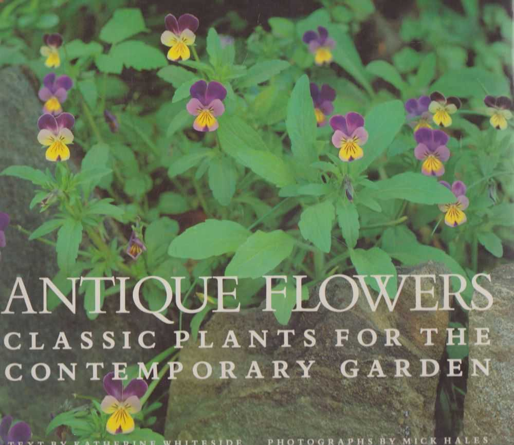 Antique Flowers: Classic Plants for the Contemporary Garden, Katherine Whiteside [Text]