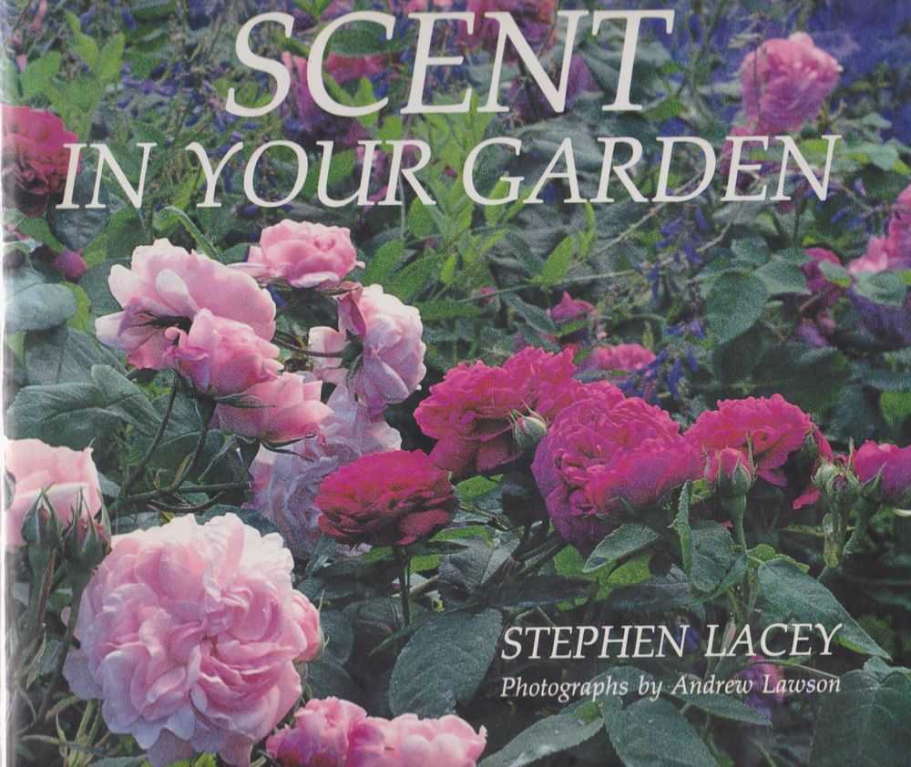 Scent In Your Garden, Stephen Lacey