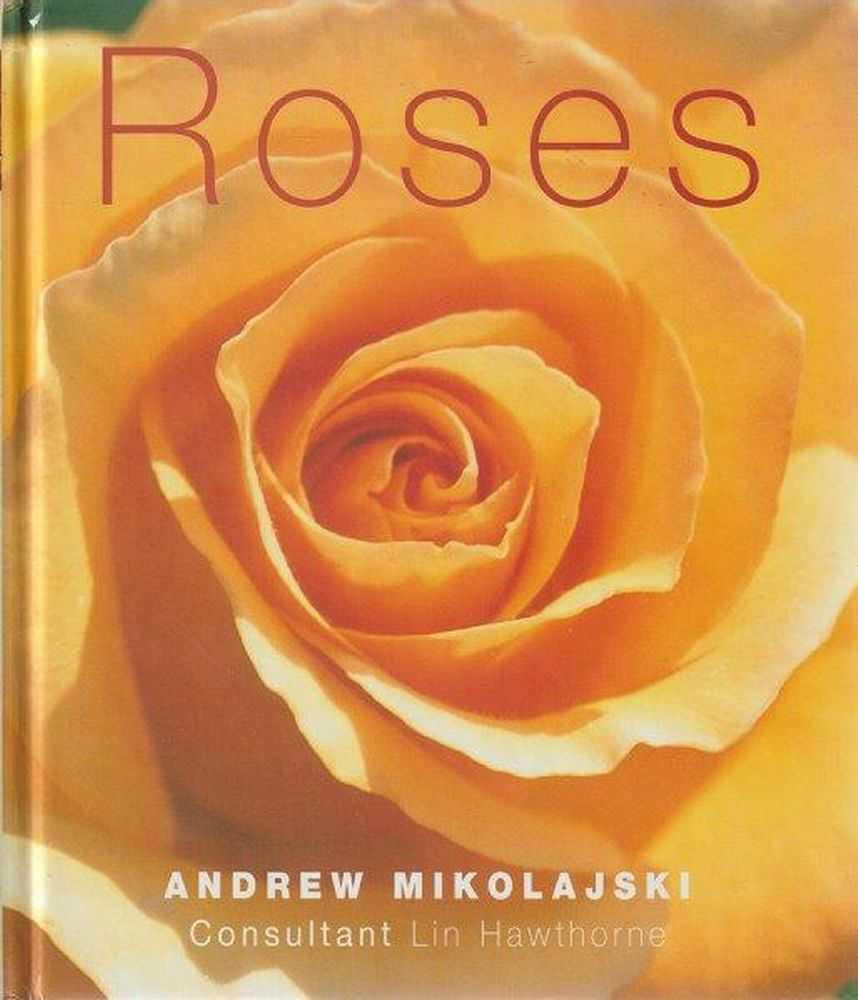 Roses, Andrew Mikolajski