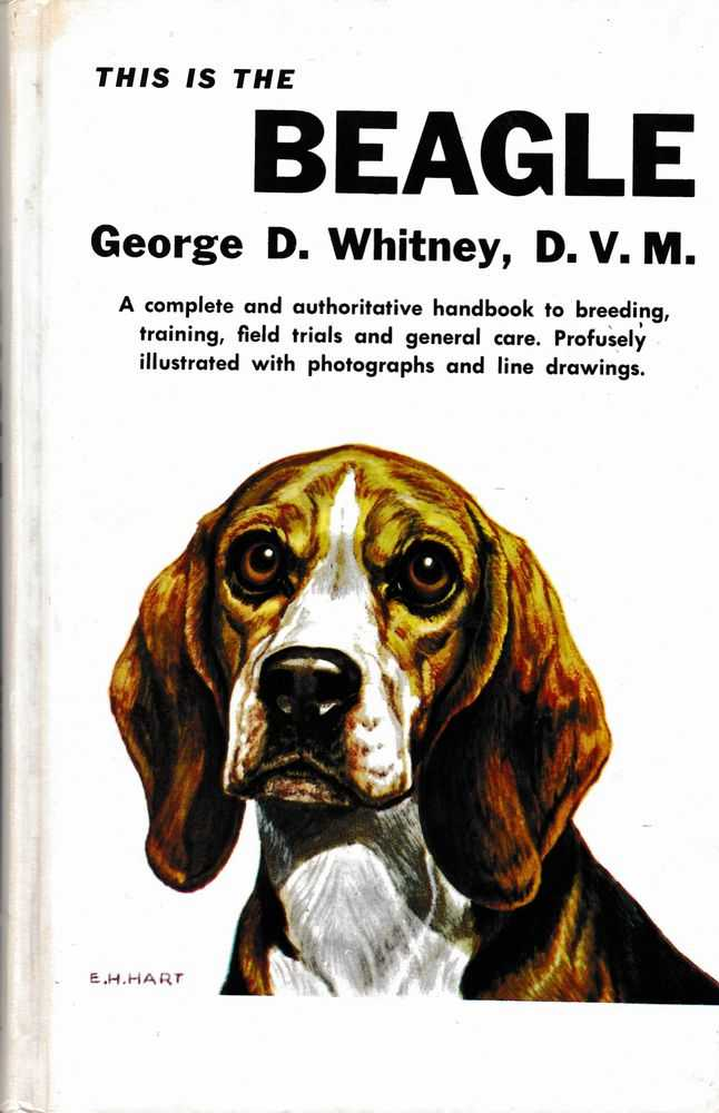 This is the Beagle, George D. Whitney