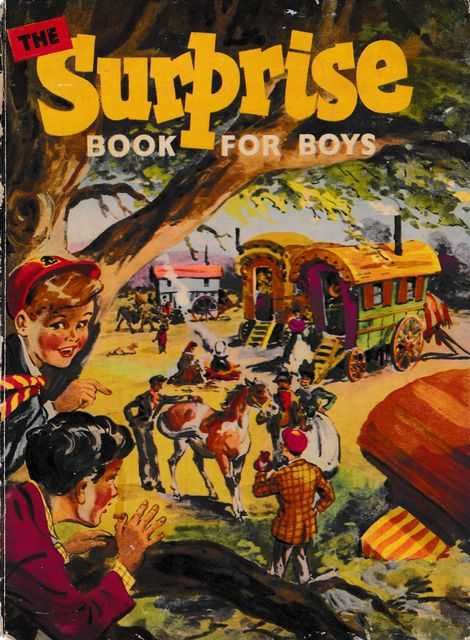 The Surprise Book for Boys, Various