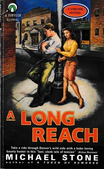 A Long Reach [A Streeter Mystery], Michael Stone