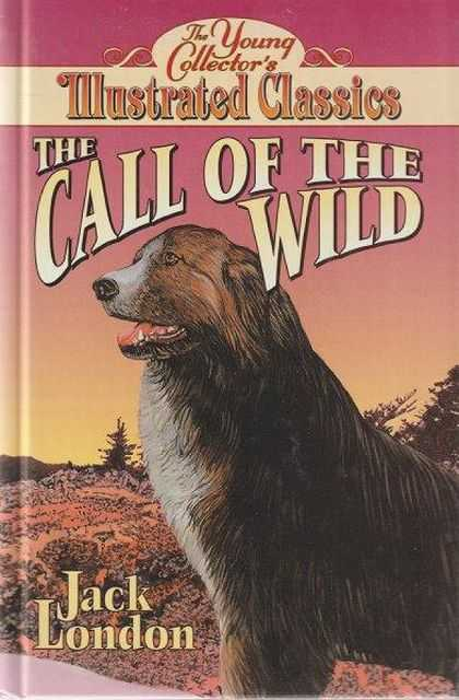 The Young Collector's Illustrated Classics: The Call Of The Wild, Jack London [Adapted by D. J. Arneson]