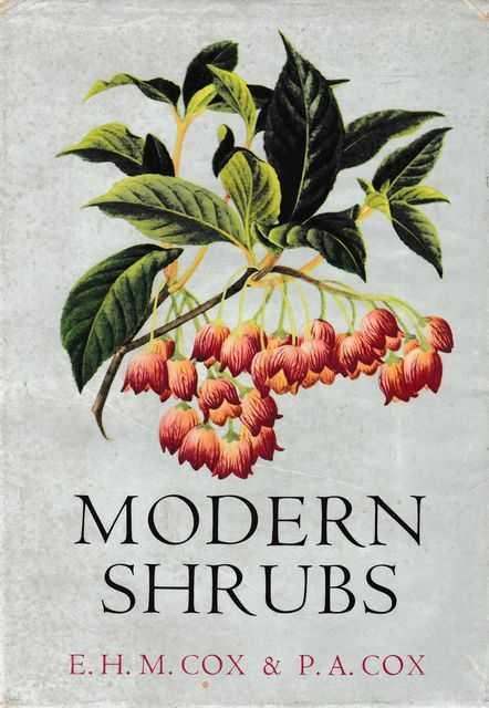 Modern Shrubs, E.H.M. Cox & P.A. Cox