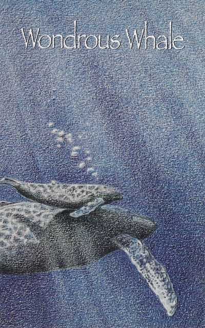 Wondrous Whale, Jean Wilson