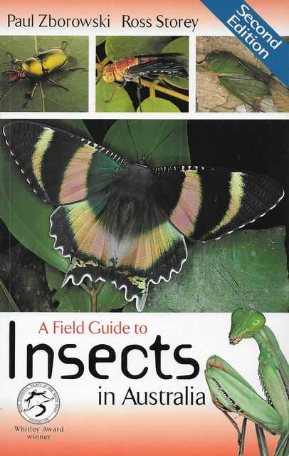 A Field Guide to Insects in Australia, Paul Zborowski, Ross Storey