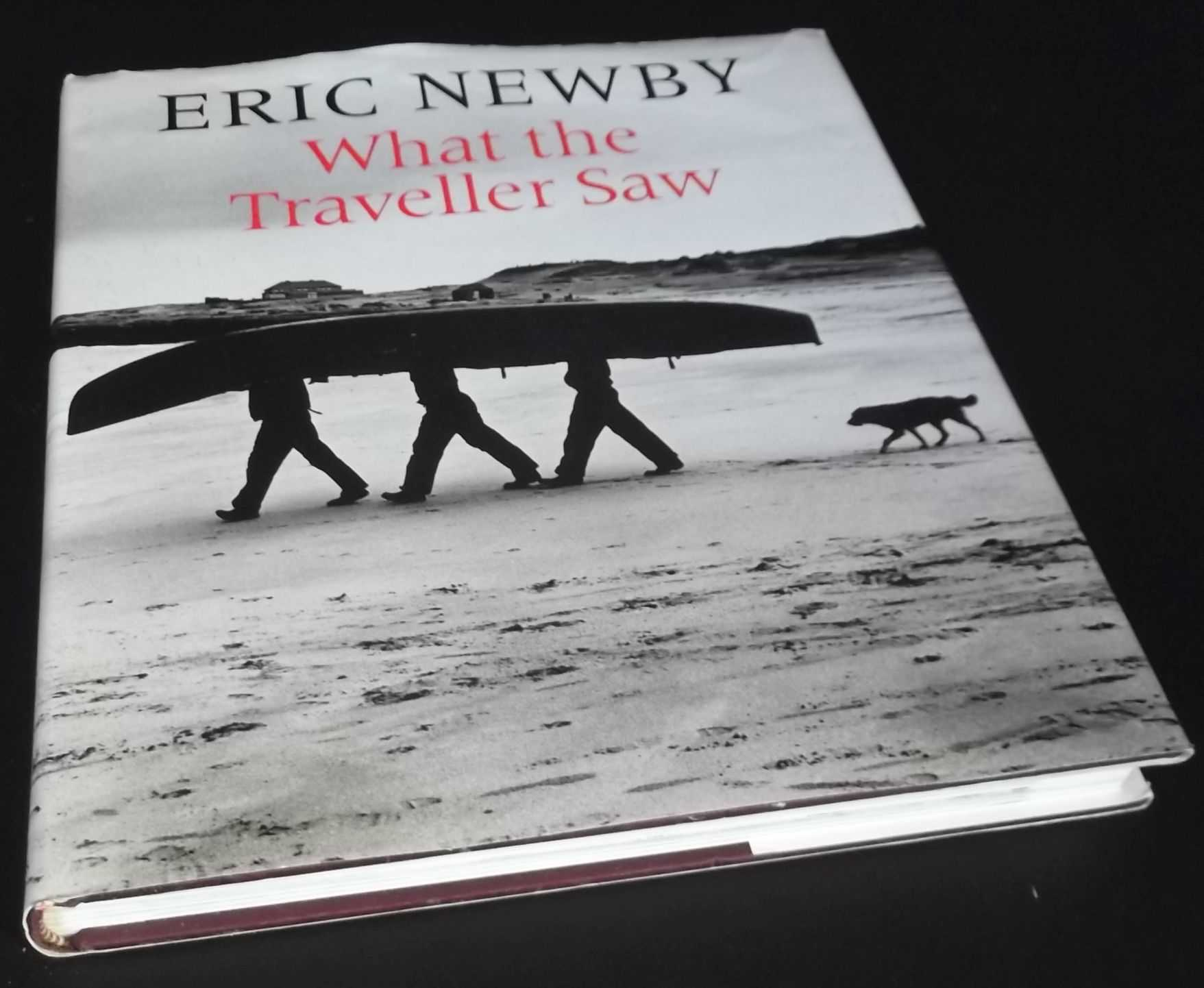 ERIC NEWBY - What the Traveller Saw