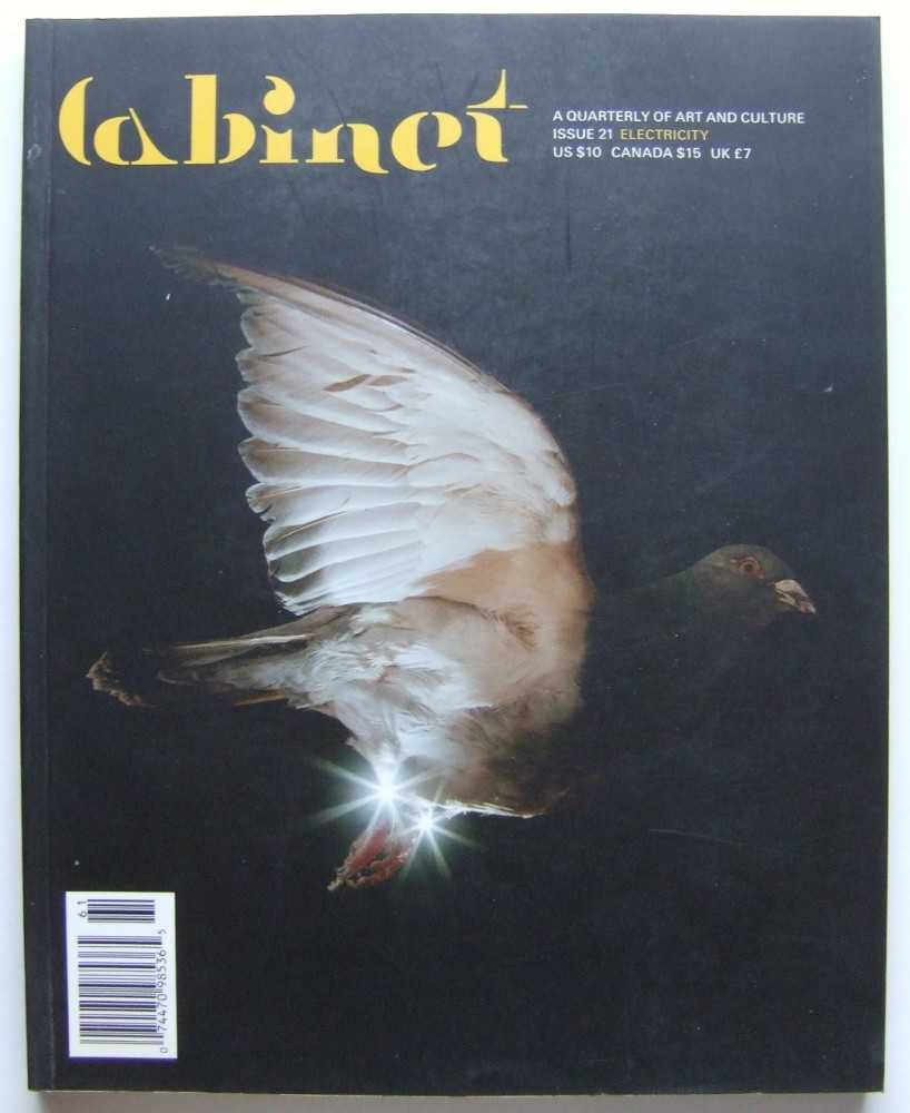 Image for Cabinet Magazine: A Quarterly Magazine of Art and Culture, Issue #21: Electricity (Spring, 2006)