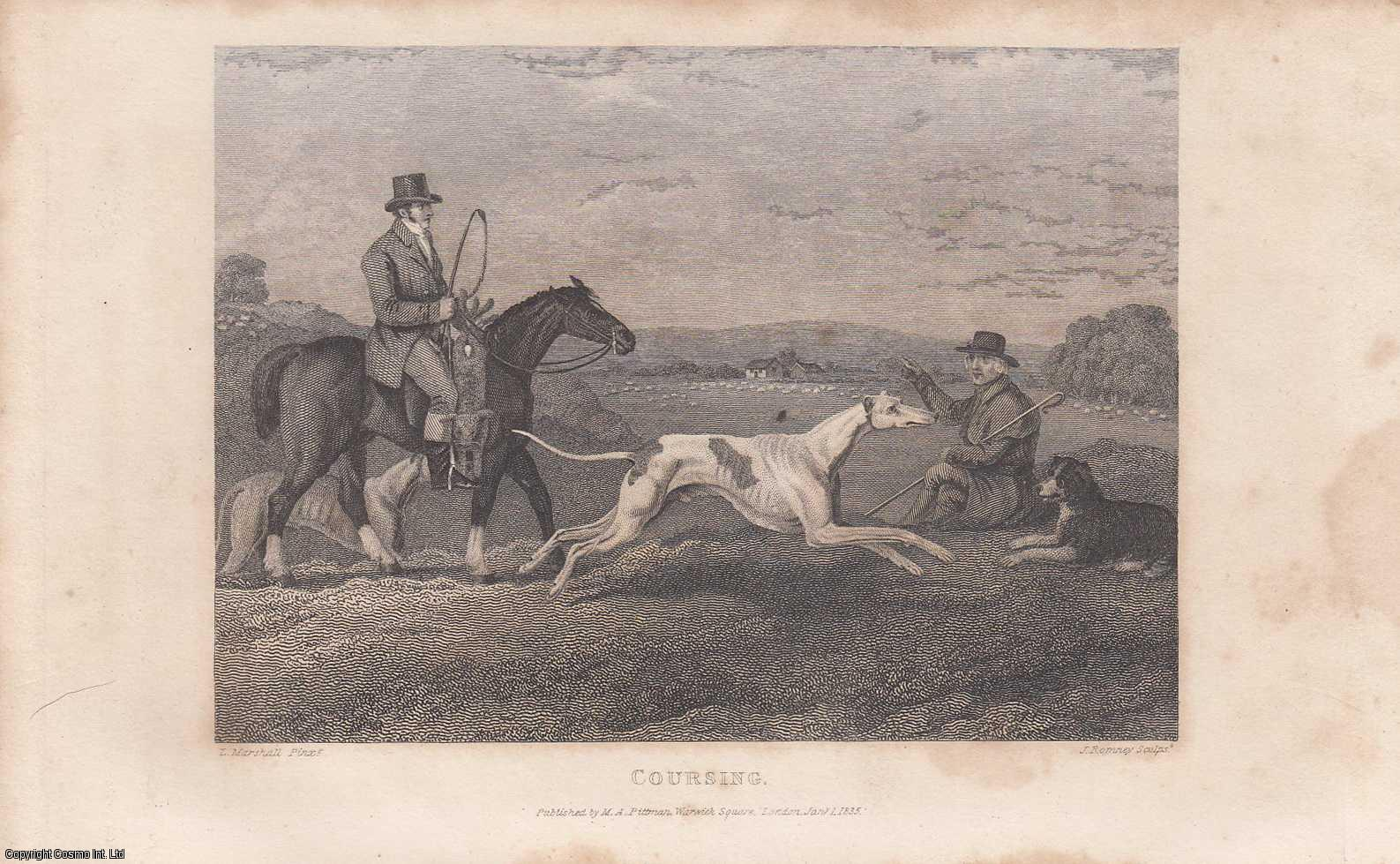 Coursing, Engraved by Greig, from a Painting by Lambert Marshall., ---.