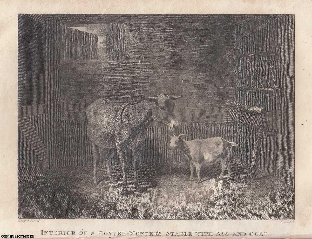 A Costermonger's Stable with Ass and Goat. An Engraving by Mr. Scott., ---.
