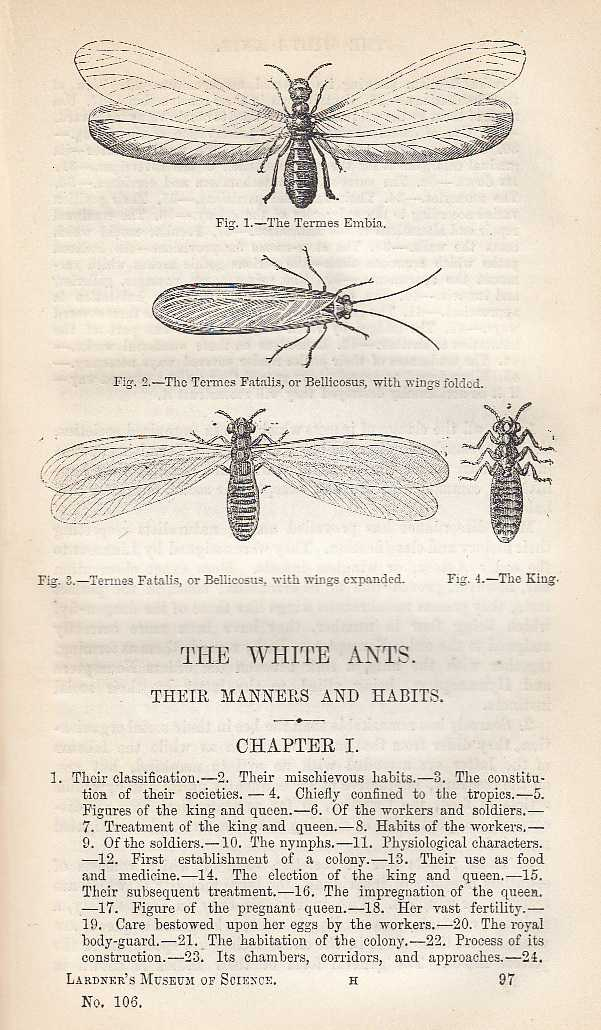 The White Ants. Their Manners And Habits., Dionysius Lardner.