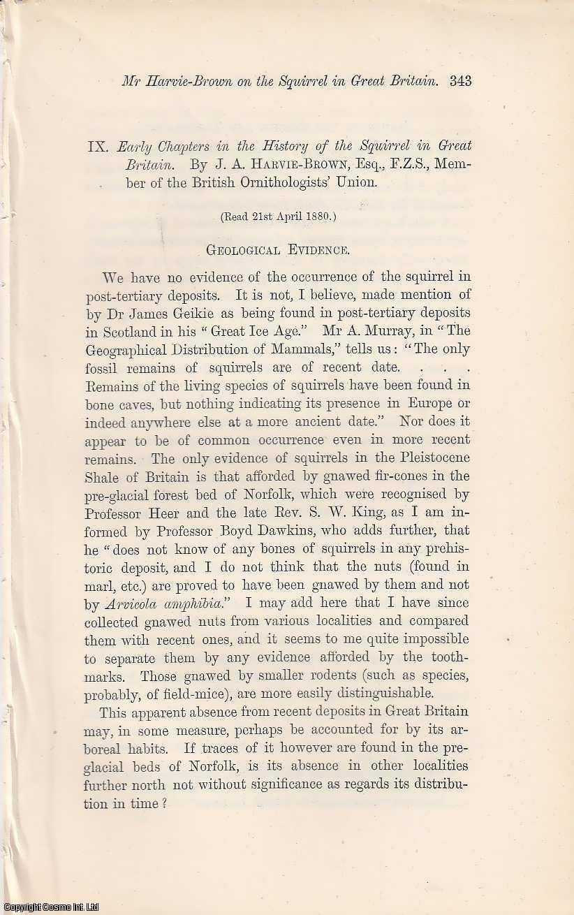 Early Chapters in the History of the Squirrel in Great Britain (3 part article)., Harvie-Brown, J.A.