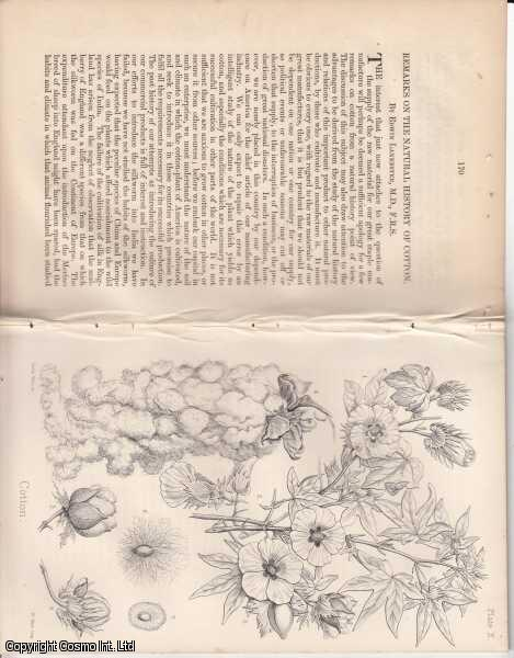 Remarks on The Natural History of Cotton., Lankester, Edwin