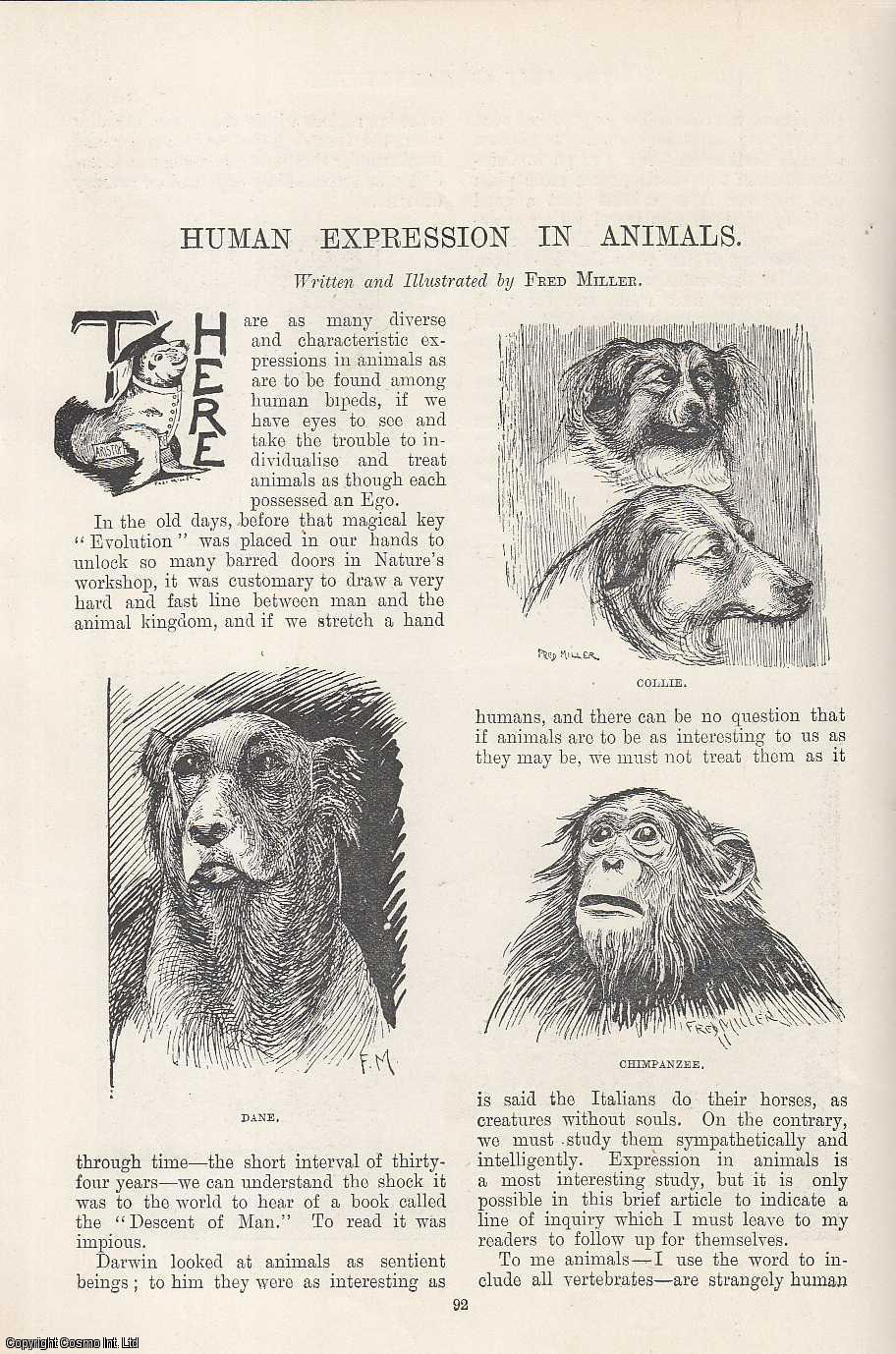 MILLER, FRED - Human Expression in Animals. Illustrated by Fred Miller. An original article from the Windsor Magazine, 1895.