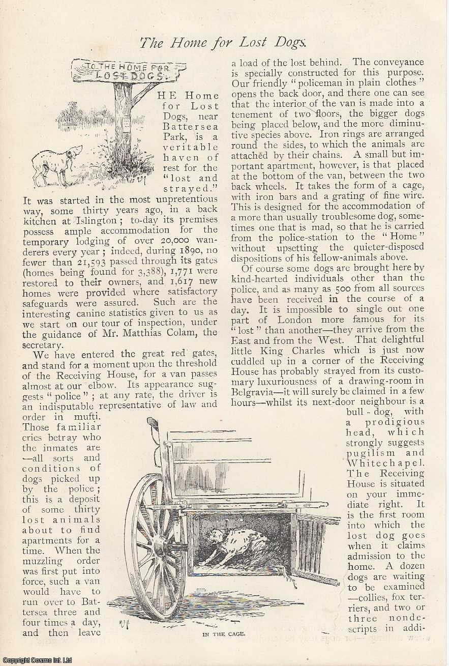 --- - Home For Lost Dogs. Battersea. An original article from The Strand Magazine, 1891.